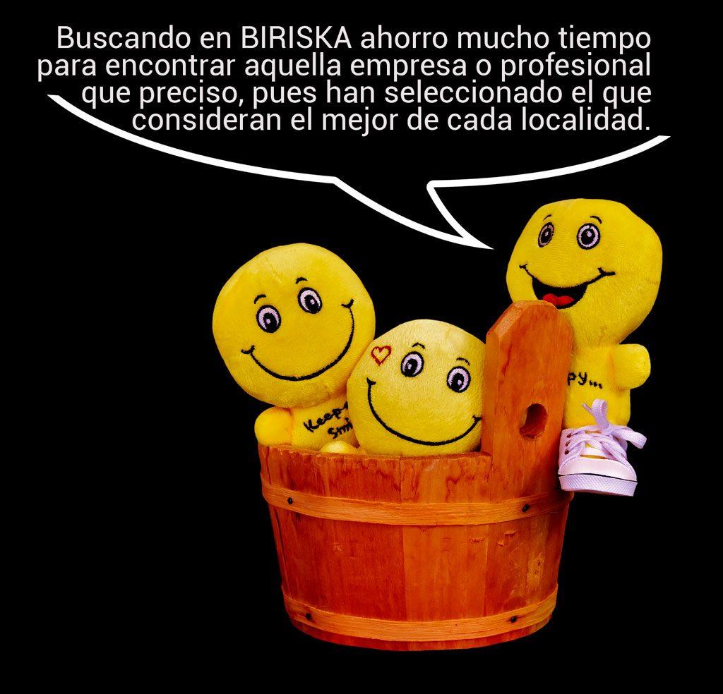biriska-com-ahorro-tiempo