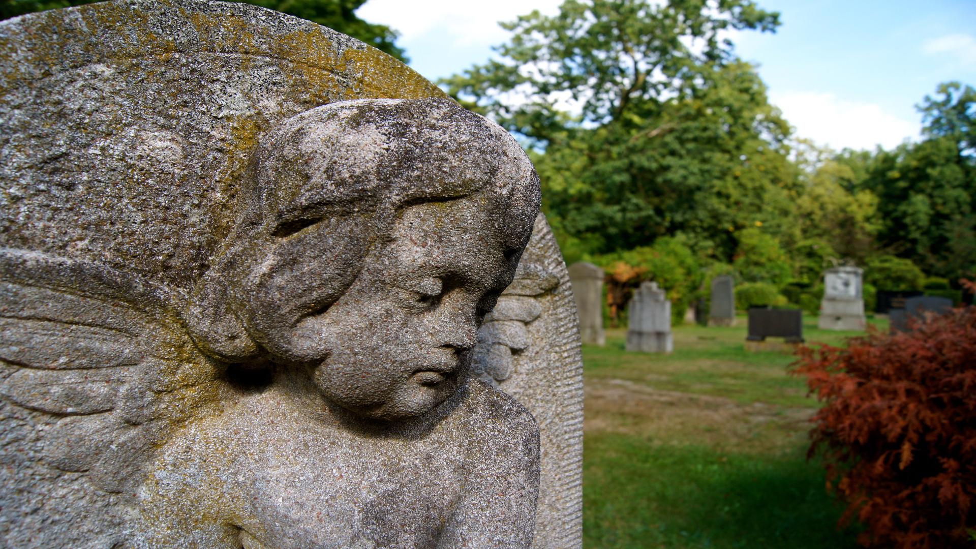 En Brooklyn tienen sidra de edición limitada que proviene de sus tumbas.1920