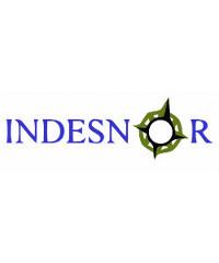 Ingenieria y desarrollo Lugo Indesnor logo