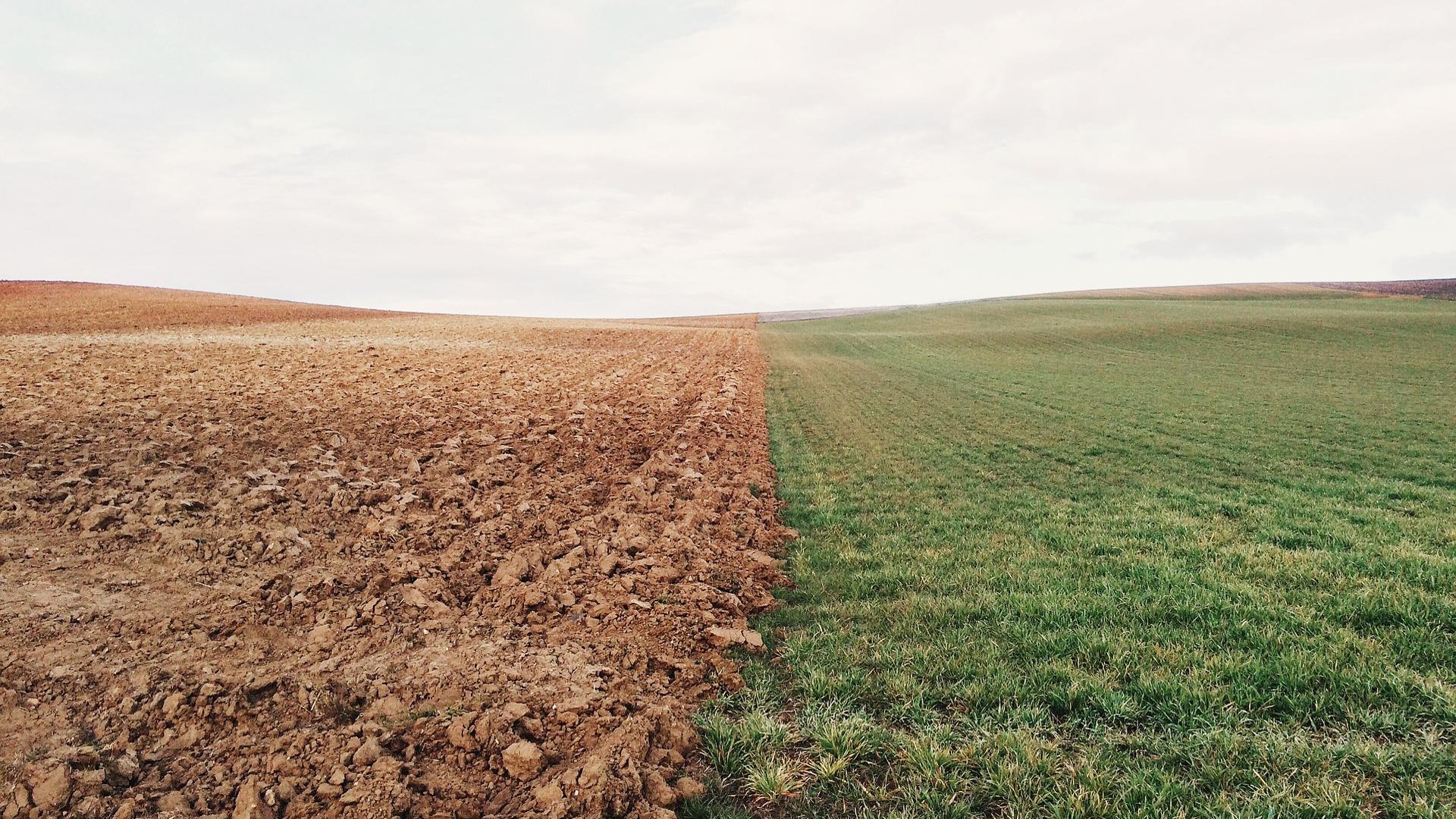 galicia-continua-perdiendo-superficie-agraria-util-1920