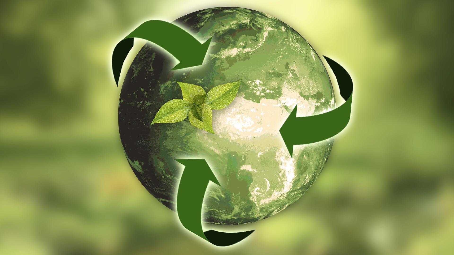 consejos-basicos-para-que-una-empresa-sea-mas-sostenible-1920