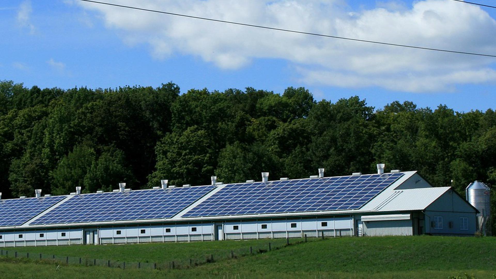 ayudas-para-instalar-energias-renovables-en-el-sector-agroganadero-1920