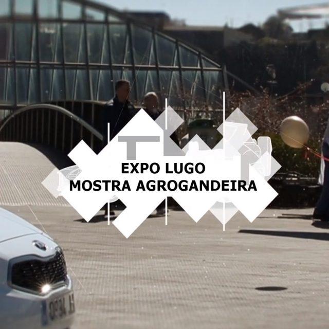 Expo Lugo Mostra Agrogandeira