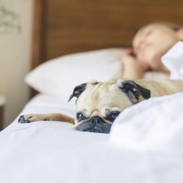 La importancia de dormir bien también para la piel