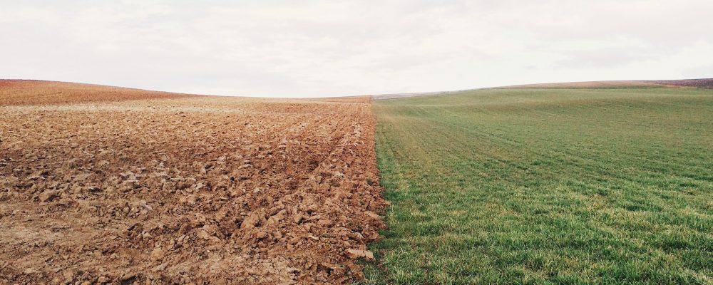 Galicia continúa perdiendo superficie agraria útil