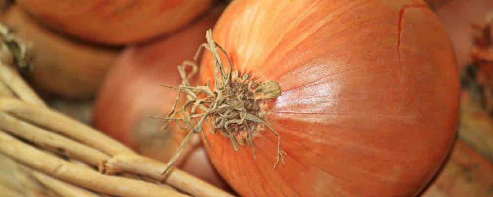 La cebolla: características nutricionales, beneficios y tipos