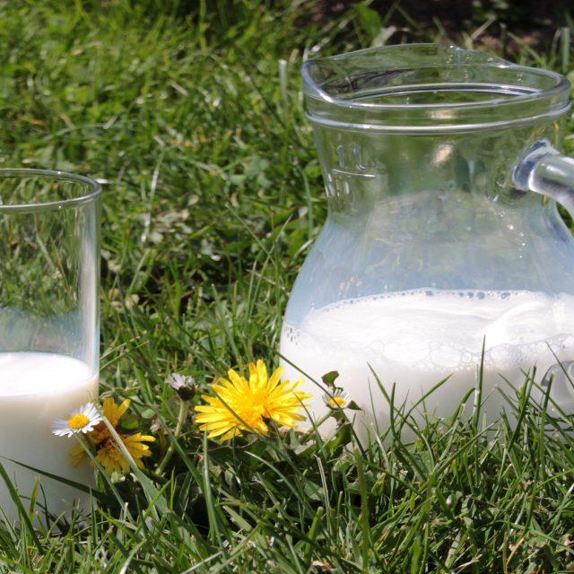 ¿Qué es la lactosa?