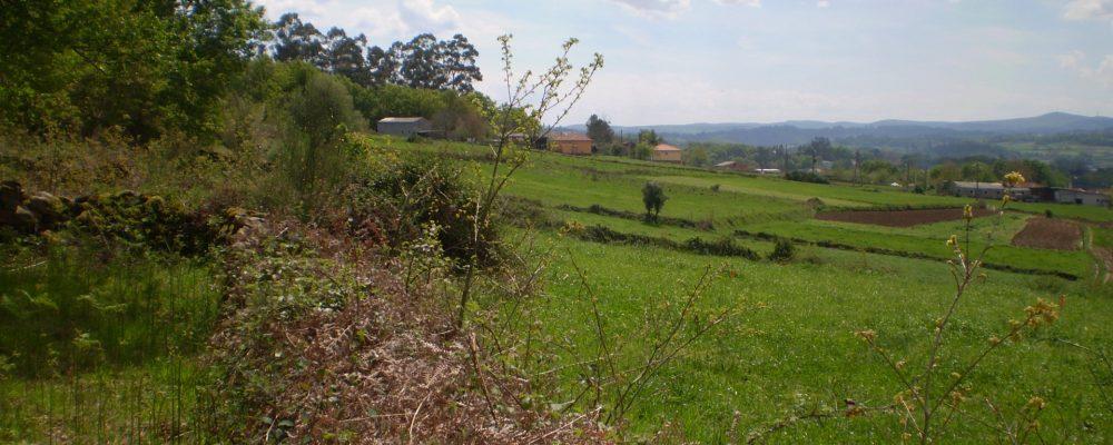 El proceso de renovación catastral en Galicia está en su recta final