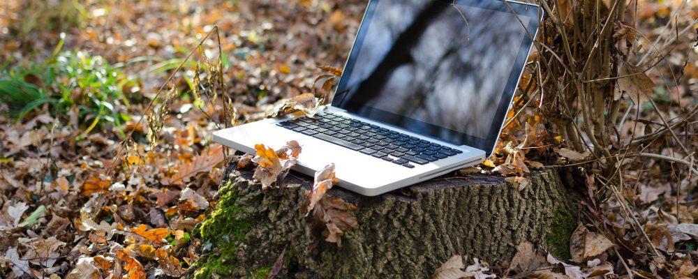 La obligación de realizar las gestiones de la Seguridad Social por Internet causará problemas en el rural