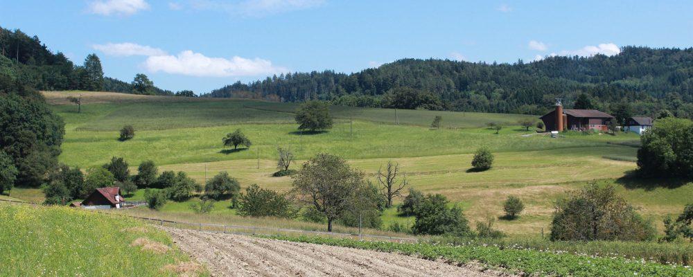 Los principios básicos de la agroecología