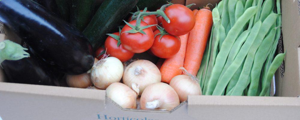 ¿Por qué regalar una cesta variada de hortalizas?