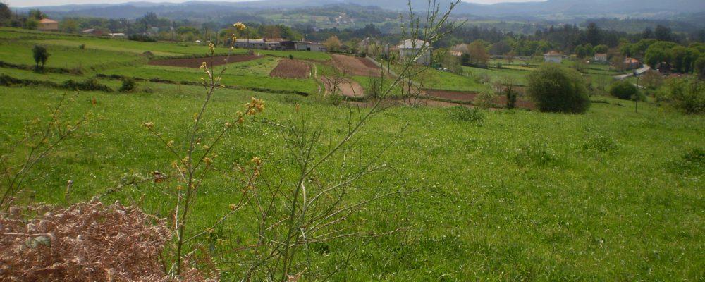 En defensa del rural gallego