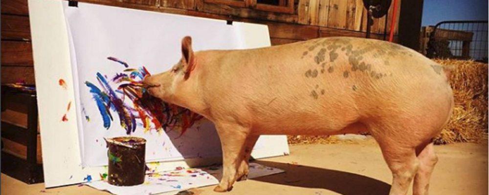 Una cerda pinta cuadros y los vende por 1000 euros