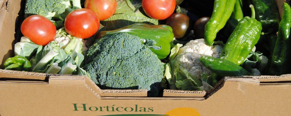 Esta Navidad apuesta por un regalo saludable: cesta de verduras y hortalizas