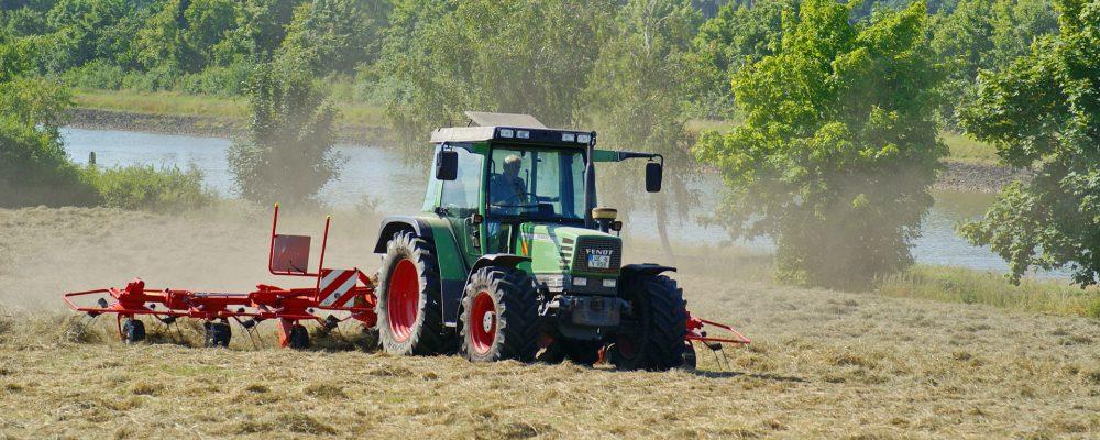 Medio Rural pagará el 90% de las ayudas de la PAC este mes