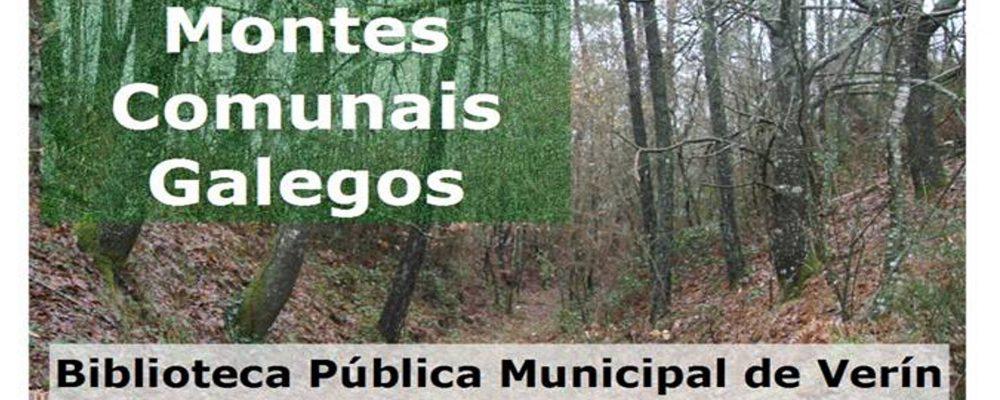 I Xornadas sobre Montes Comunais Galegos en Verín