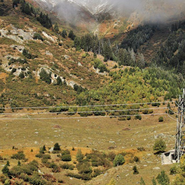 La Xunta pretende obligar a los propietarios a cortar el arbolado en los márgenes de líneas eléctricas