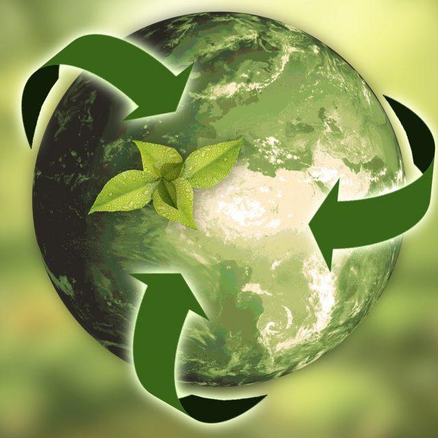 Consejos básicos para que una empresa sea más sostenible