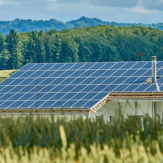 Instalar energías renovables en el sector agroganadero