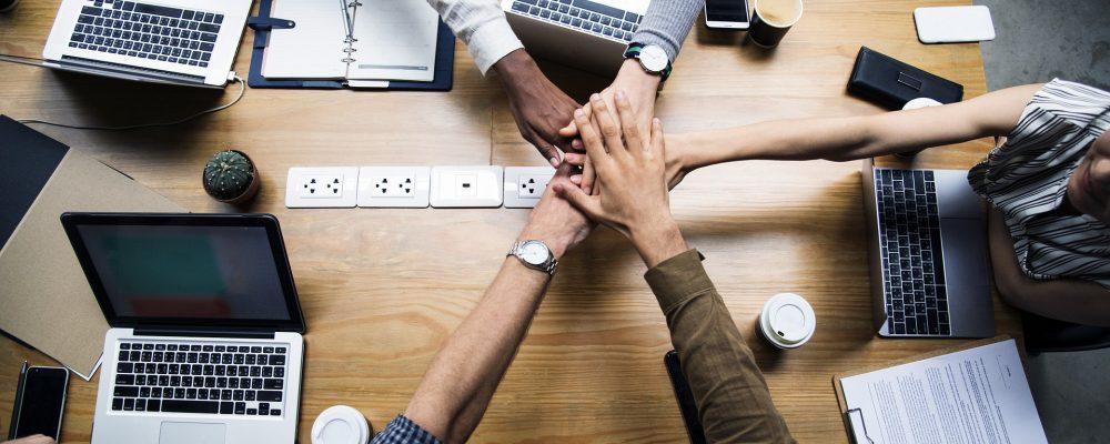 Los equipos de trabajo y sus roles