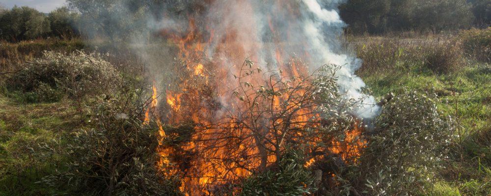 Todo lo que debes saber sobre el permiso de quemas