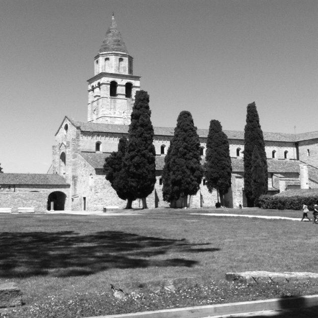 ¿Sabes por qué hay cipreses en el cementerio?
