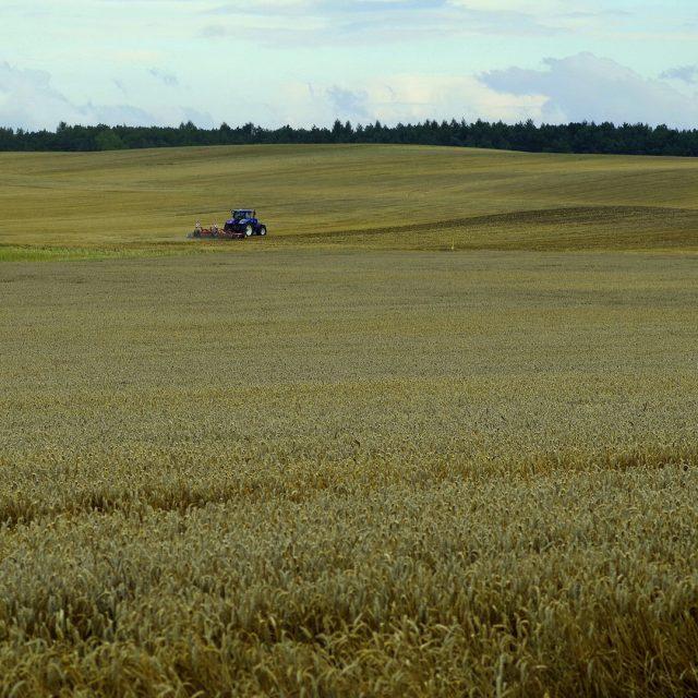Desbrozadoras para tractores: características y tipos