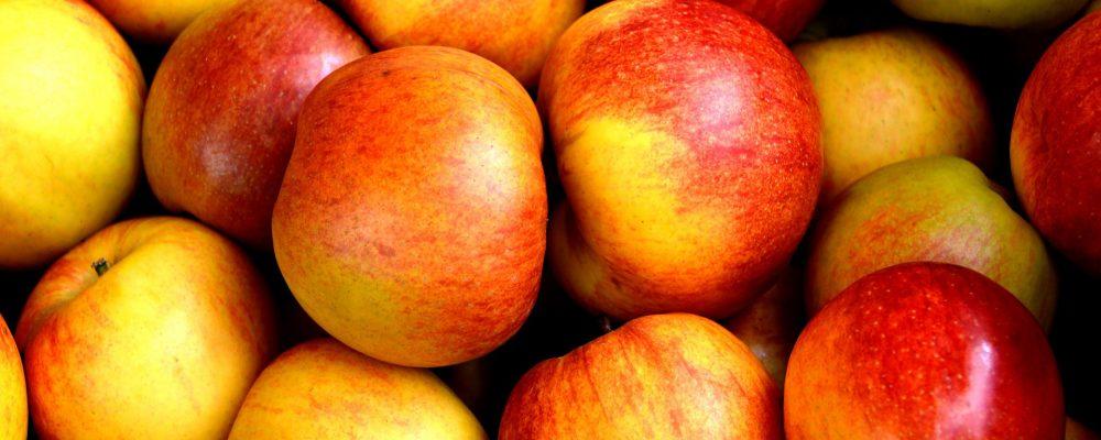 Las frutas preferidas por todos
