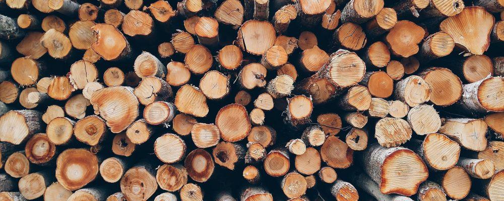 Ayudas para comprar maquinaria nueva forestal