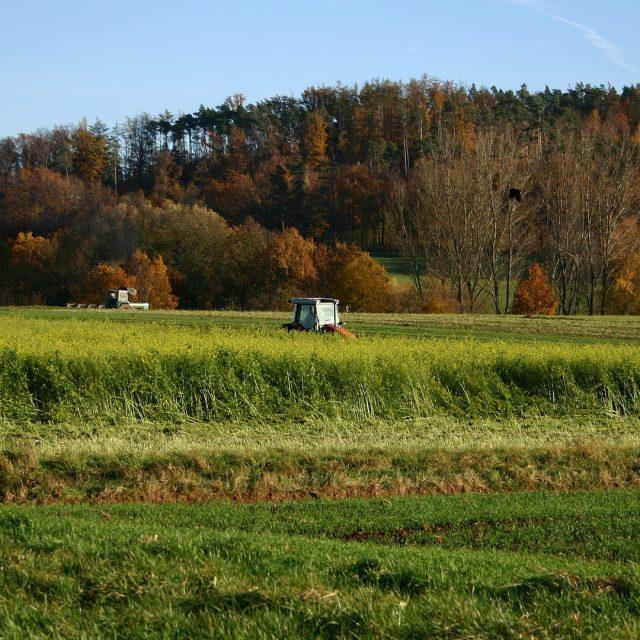 Medidas para prevenir el vuelco del tractor