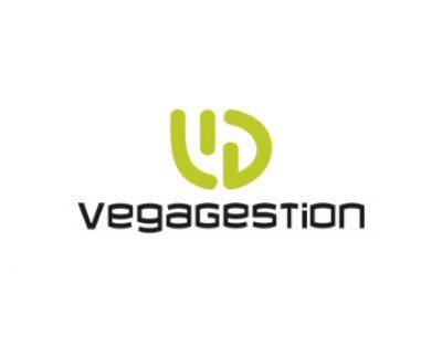 Vega Gestión
