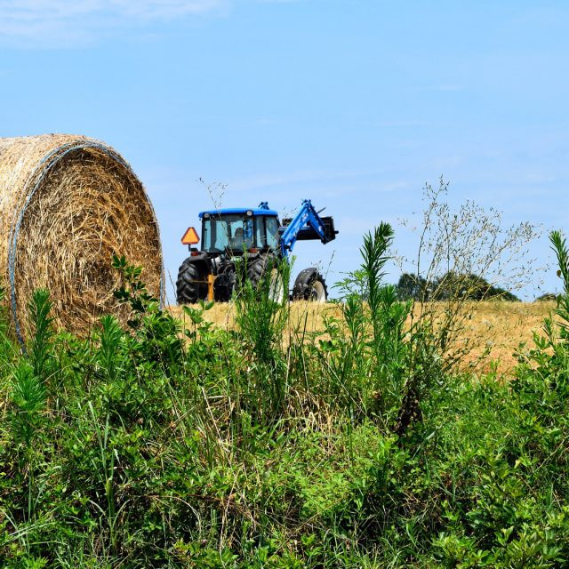 Sube la venta de maquinaria agrícola