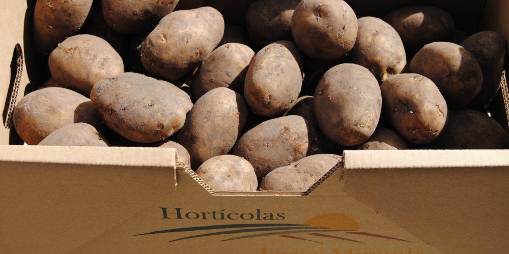 Las principales variedades de patata