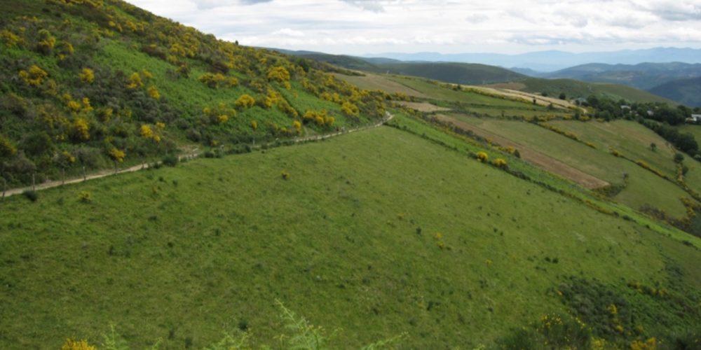 Ayudas para fijar los límites de comunidades de montes