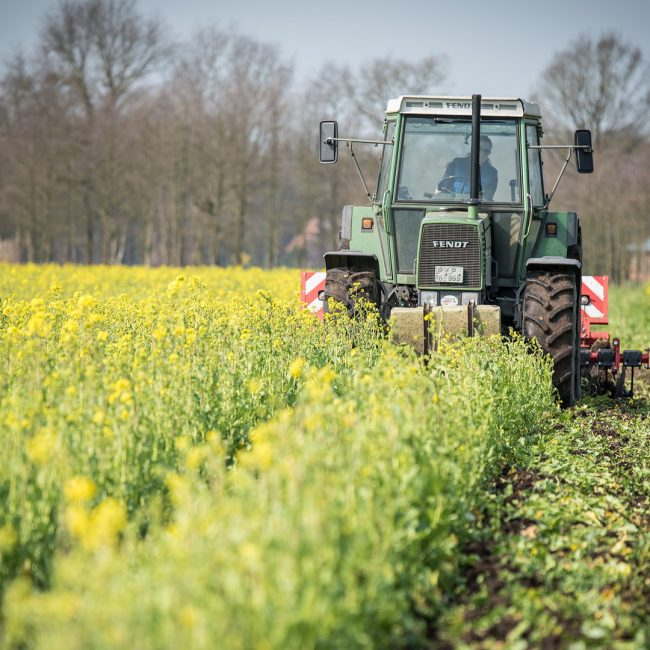 Ayudas para la renovación de maquinaria agrícola