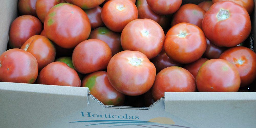 Un solo tomate proporciona el 40% diario de vitamina C