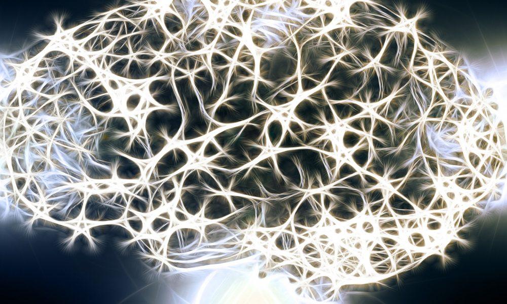 Hasta los 90 años el cerebro produce neuronas 1920