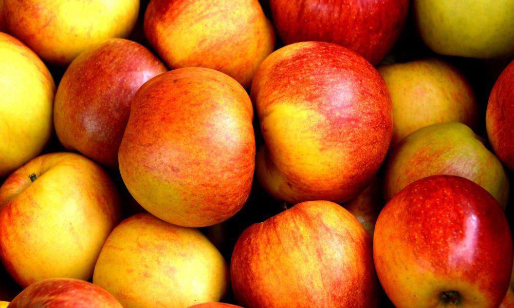 las-frutas-preferidas-por-todos-1920