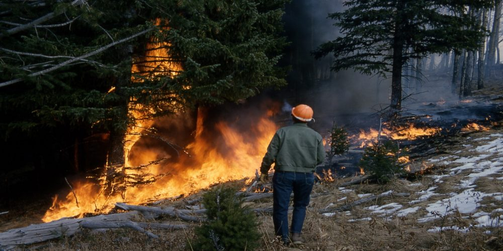 ¿Cuál es la distancia a la que debemos limpiar para prevenir los incendios forestales?