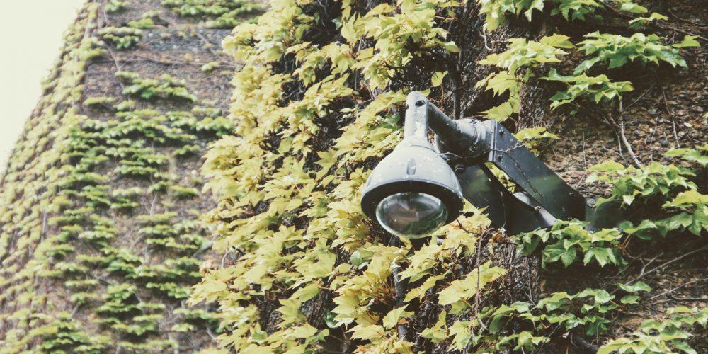 88 cámaras vigilarán el territorio gallego para prevenir incendios forestales