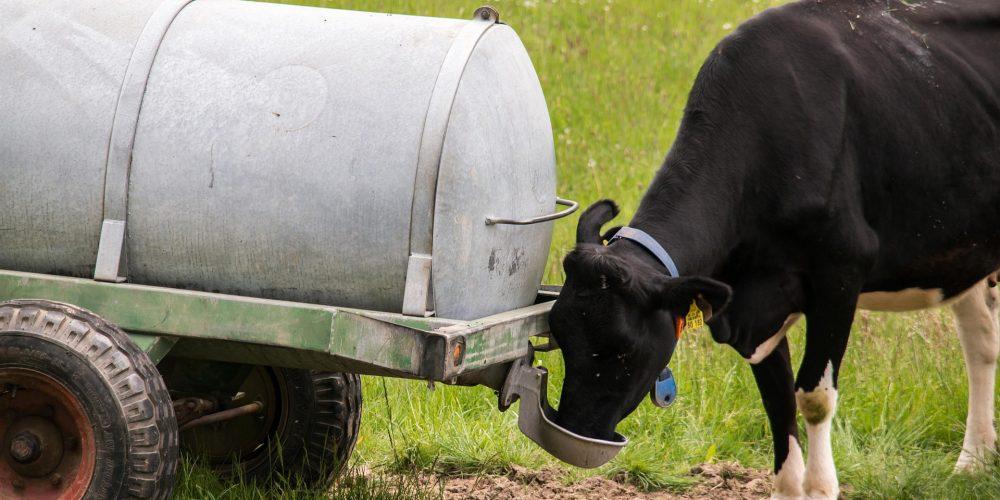 Un mes para solicitar ayudas que garanticen el suministro de agua a las explotaciones agrarias