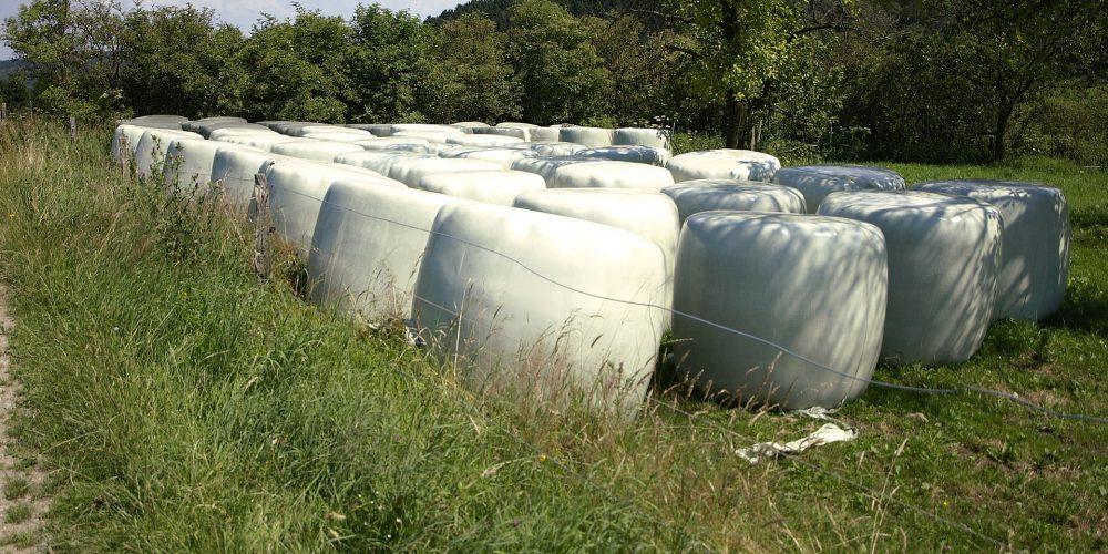 Unións Agrarias denuncia que Hacienda pretende multar a familiares y amigos que ayudan en labores agrícolas
