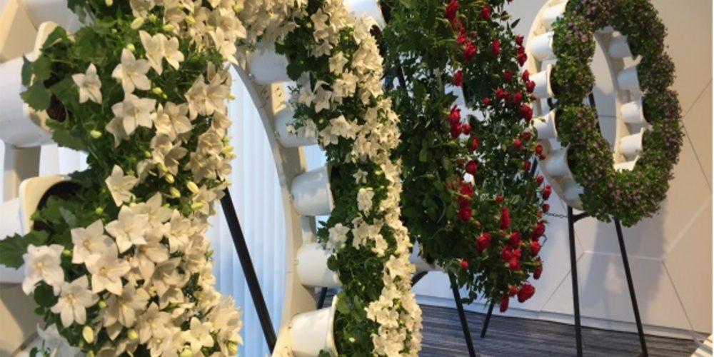 ¡Mira que idea! Coronas de flores ecológicas
