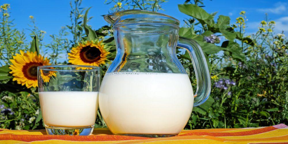 Nueva denuncia por los precios a la baja de la leche en Galicia