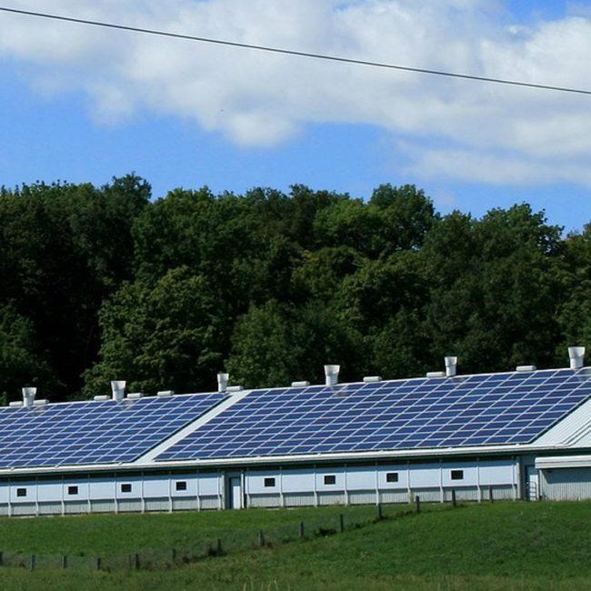 Ayudas para instalar energías renovables en el sector agroganadero