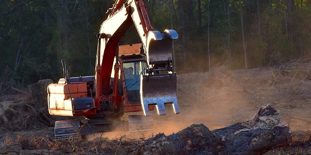 Nuevo plan de formación para el sector forestal gallego