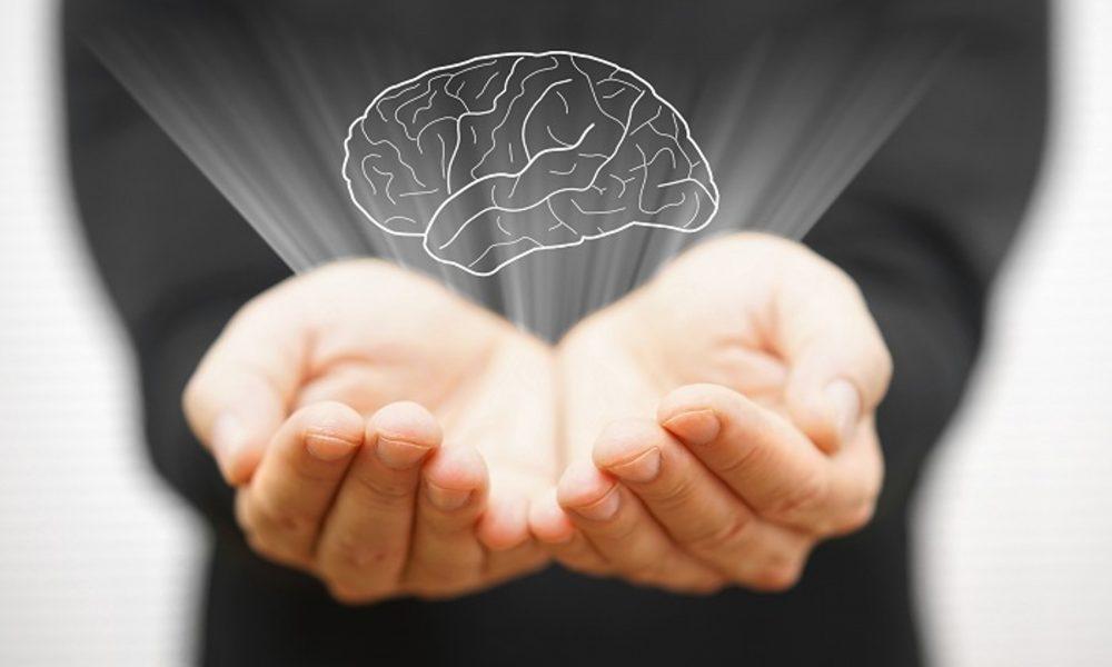 que es la neuro negociación y como puede ayudarnos a cerrar tratos