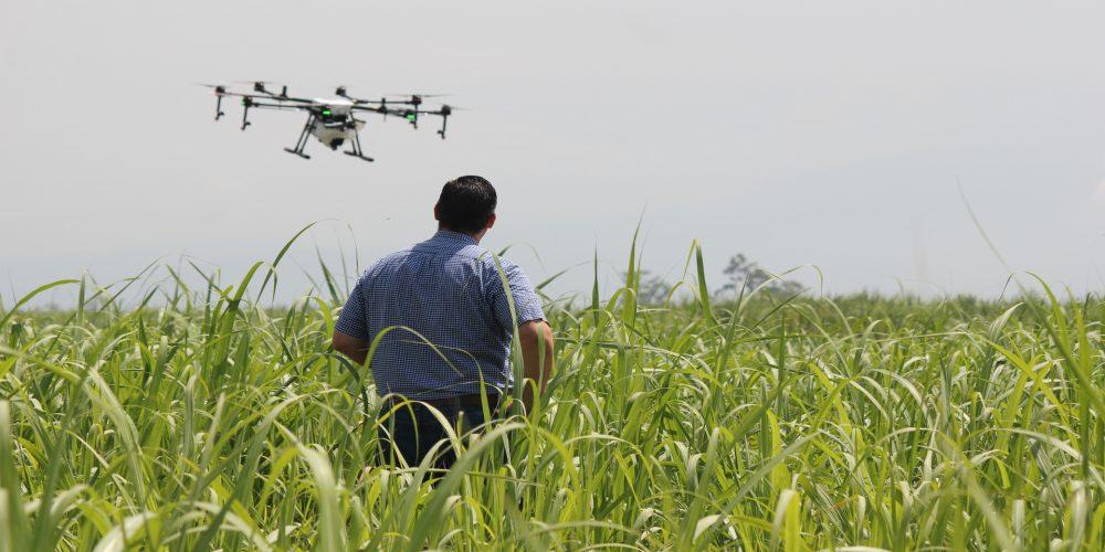 Drones para controlar el ganado y los cultivos