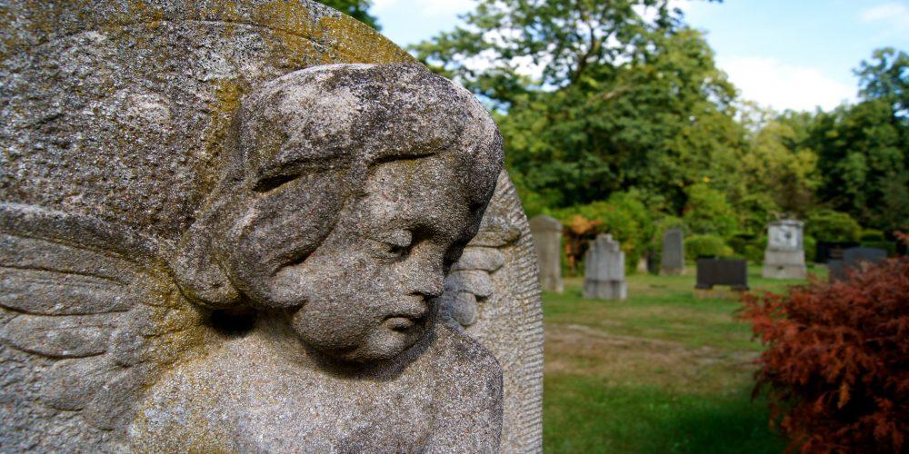 En Brooklyn tienen sidra de edición limitada que proviene de sus tumbas