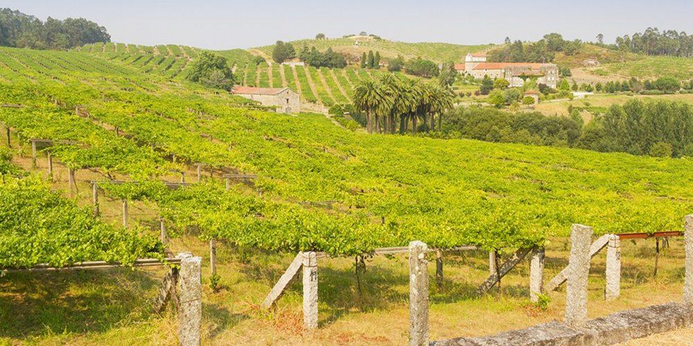 La prestigiosa Wine Enthusiast Magazine incluye a Galicia entre las candidatas a Región de Vino del Año